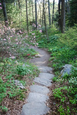 Area attractions for Garden in the woods framingham ma